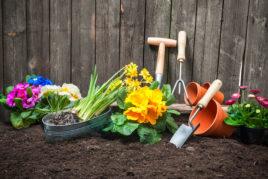 Ein Zaun mit Erde davor und verschiedenen Utensilien wie Blumen, Schaufel etc. für einen schönen Vorgarten